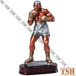 Trophée de boxe