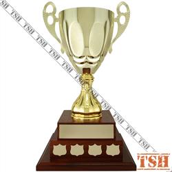 Trophée Limoilou
